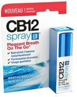CB 12 Spray haleine fraîche 15ml à Mérignac