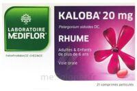 KALOBA 20 mg Comprimé pelliculé Plq/21 à Mérignac