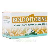 BOLDOFLORINE, mélange de plantes pour tisane en sachet-dose B/24 à Mérignac